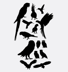 hummingbird parrot and owl silhouette vector image