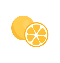 orange fruits icons closeup vector image