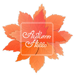 a bouquet of maple leaves frame with the vector image