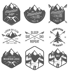 Set of vintage skiing labels and design elements vector image