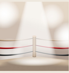 brown boxing light empty stage vector image