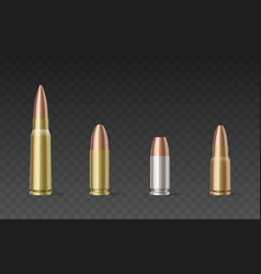 Bullets different calibers and materials vector