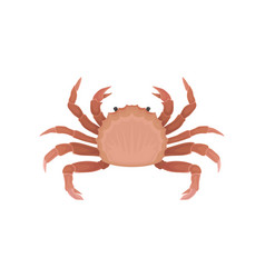 flat icon of crab with claws marine animal vector image