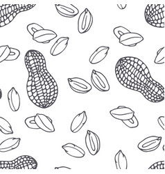 Hand drawn outline seamless pattern with peanuts vector