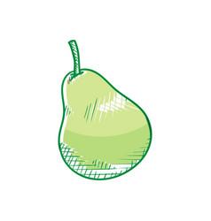 pear fruit logo vector image