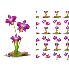 seamless background design with orchid flowers vector image