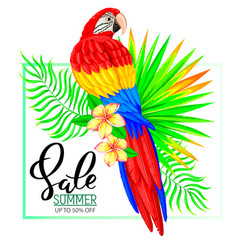 Summer sale composition with parrot flowers and vector