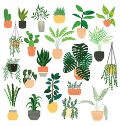 Collection hand drawn indoor house plants vector