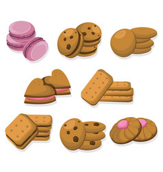Delicious dessert chocolate cookies set collection vector