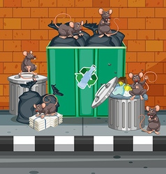 Dirty rats all over trashcans vector