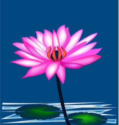 lotus pink plant icon vector image