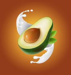 milk splash with avocado fruit vector image