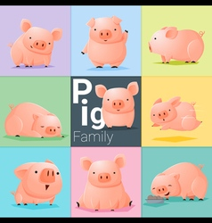 Set of Pig family vector