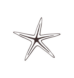 starfish sketch collection vector image
