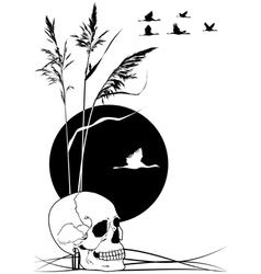 skull cranes and reed vector image