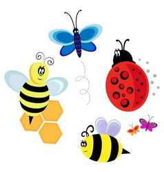 Characters bugs bee and butterfly vector