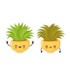 Cute happy smiling and sad dried plant vector