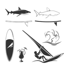 elements for surfing labels logos vector image