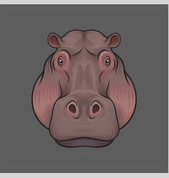 Head of hippopotamus portrait of wild animal hand vector