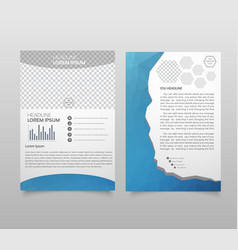 presentation layout design template annual report vector image