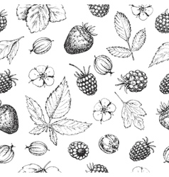 Seamless hand drawn pattern with berries vector image