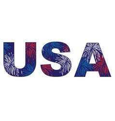 usa fireworks vector image
