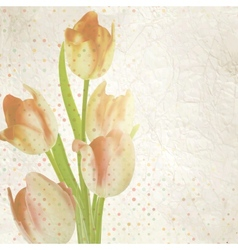 Vintage card with tulips and copyspace EPS 10 vector image
