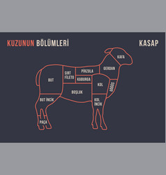 meat cuts poster butcher diagram and scheme - vector image