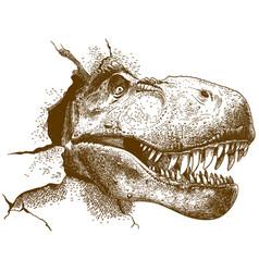 Engraving of tyrannosaurus vector