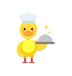 Funny little yellow duckling chef holding silver vector