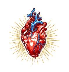 Heart Art vector