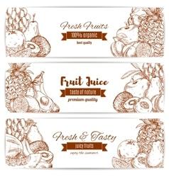 Organic natural fruit food sketch banner vector image