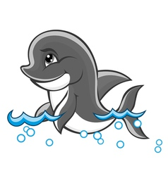 beautiful cute dolphin vector image vector image