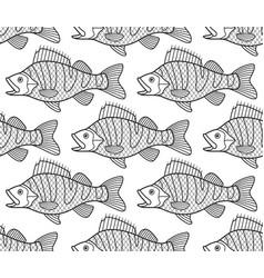 Bass fish contour seamless pattern vector