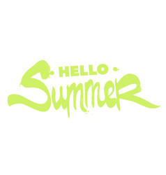 Beautiful inscription hello summer vector