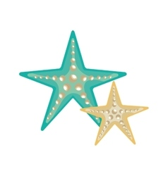 blue and white sea stars vector image