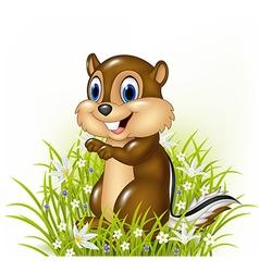 Cartoon chipmunks on grass background vector