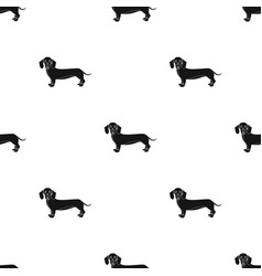 dachshund single icon in black styledachshund vector image