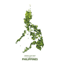 Green leaf map of philippines of a vector