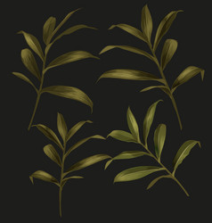 Green leaf set vector