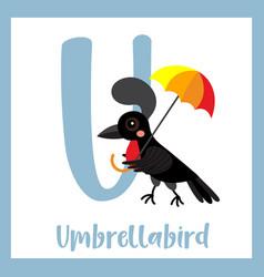 Letter u vocabulary umbrellabird vector
