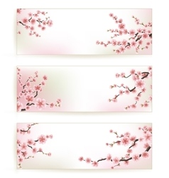 Set beautiful floral banners eps 10 vector