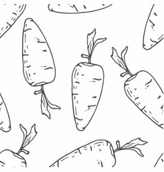 hand drawn outline seamless pattern with carrot vector image vector image