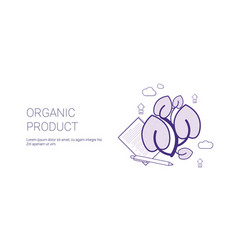 organic product eco food concept template web vector image vector image