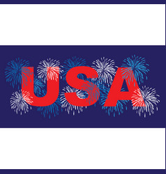usa with fireworks vector image