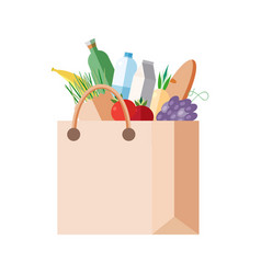 paper bag with purchases full packet with fresh vector image