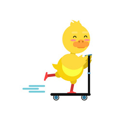 funny little yellow duckling riding kick scooters vector image