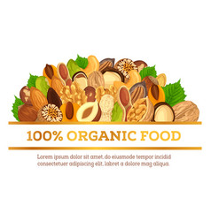 nuts at banner made for vegetarian organic food vector image