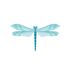 Small bright blue dragonfly with two pairs of vector