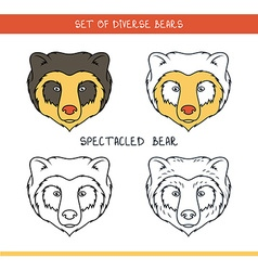 Spectacled bear Set isolated face heads bear in vector image